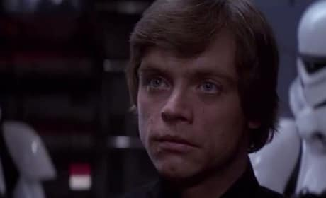 Mark Hamill is Luke Skywalker