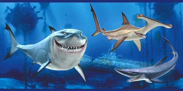 Shark Support Groups