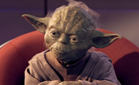 The Phantom Menace Yoda