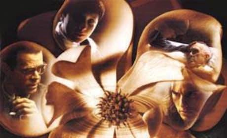 Magnolia Picture