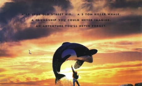 Free Willy Poster