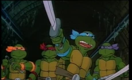 Teenage Mutant Ninja Turtles Creator Confirms Live-Action Movie