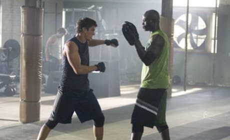New on DVD: Never Back Down