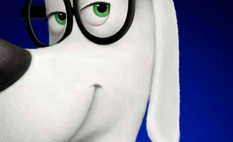 Mr. Peabody and Sherman International Poster