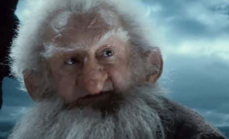 The Hobbit: The Desolation of Smaug Dwarf