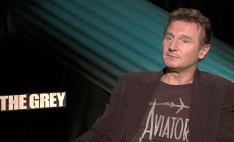Liam Neeson Interview Pic