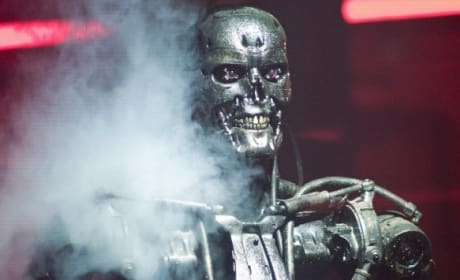 Schwarzenegger Is Back as The Terminator