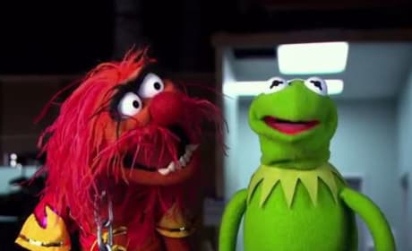 Kermit Muppets Most Wanted