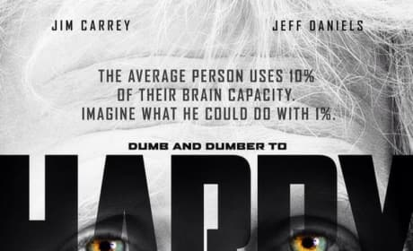 Dumb and Dumber To Harry Lucy Parody Poster