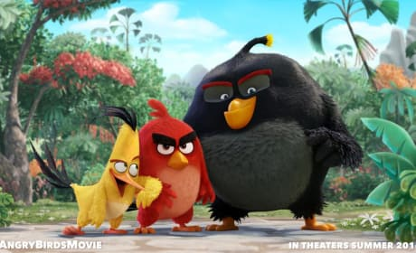 Angry Birds Movie Reveals First Photo: Cast Announced!