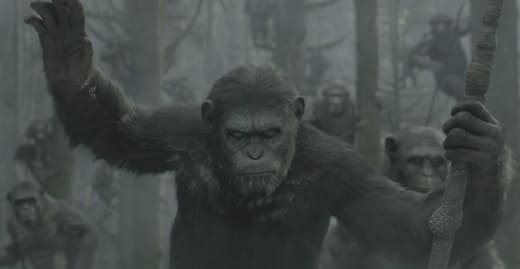 Dawn of the Planet of the Apes Cesar
