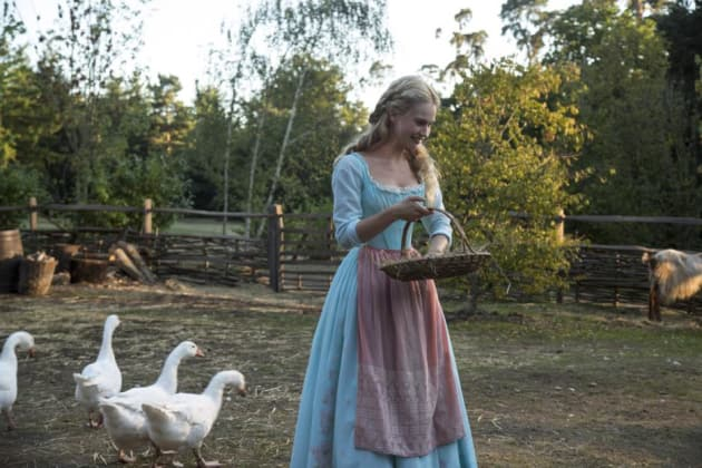 Cinderella and the Ducks