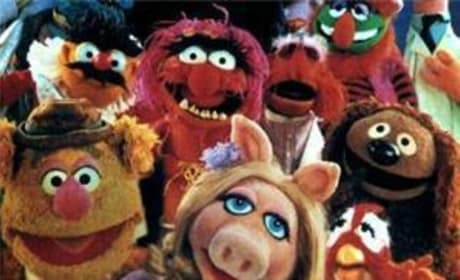 The Muppets Movie Picture