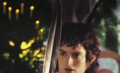The Lord of the Rings Elijah Wood
