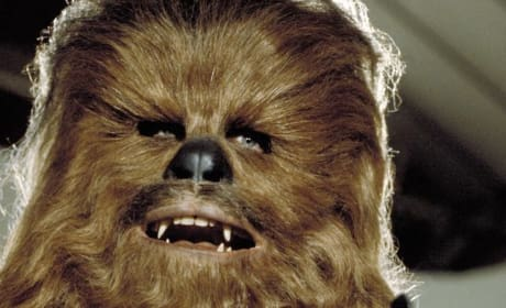 Star Wars Episode VII: Peter Mayhew Back as Chewbacca!