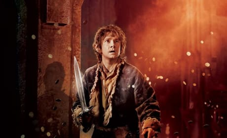 The Hobbit: The Desolation of Smaug Bilbo Baggins Poster