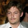 Norman Reedus Picture