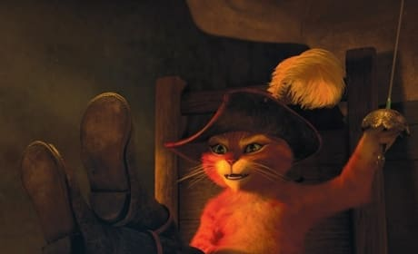 Puss in Boots: Our Favorite Film Cat Parodies Commercials
