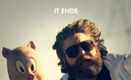 The Hangover Part III Poster Stars Zach Galifianakis