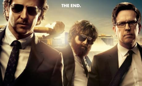 The Hangover Part III Poster: It Ends
