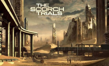 The Maze Runner Sequel Green Lit: The Scorch Trials Release Date Revealed