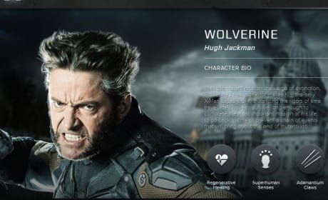 X-Men Days of Future Past Wolverine Bio Banner