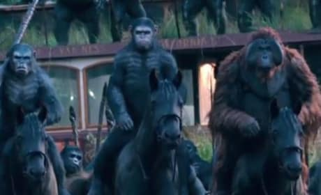 Dawn of the Planet of the Apes Picture