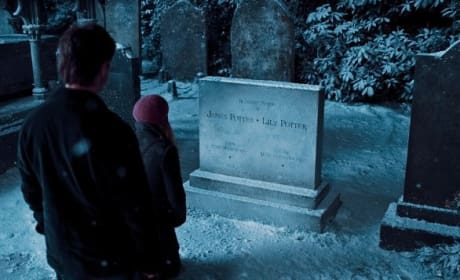 The Potter Grave