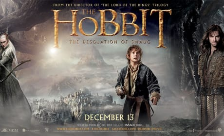 The Hobbit The Desolation of Smaug: Banner Brings Everyone Together