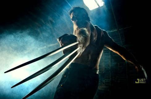 A Wolverine Photo