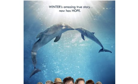 Dolphin Tale 2 Giveaway: Win Our Movie-Themed Prize Pack!