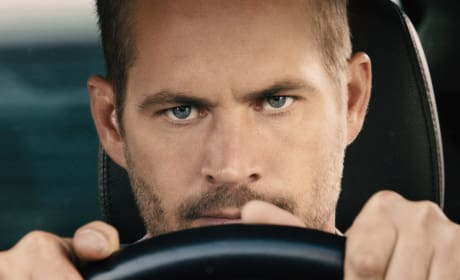 Furious 7 Paul Walker Photo