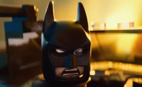 The LEGO Movie Will Arnett