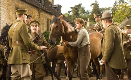 War Horse Quotes: I Will Bring You Home
