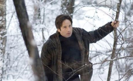 Fox Mulder Photo