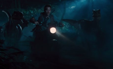 Jurassic World Raptors Photo