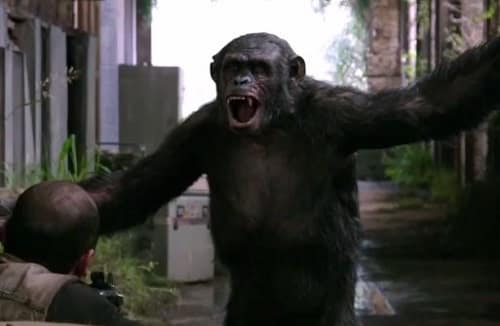 Dawn of the Planet of the Apes Playful Ape