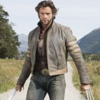 Photo of Wolverine