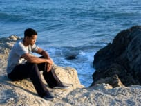 Contemplating Life