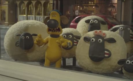 Shaun of the Sheep Photo