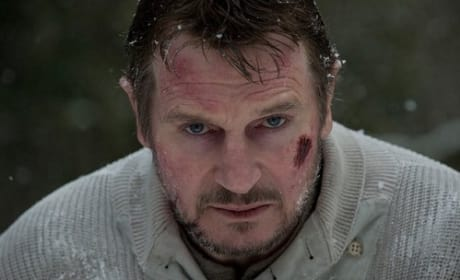 Liam Neeson: The Grey